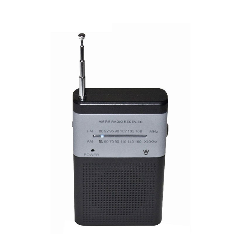 Radio EDENWOOD PR010 (photo)