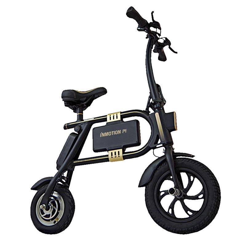E-Scooter Inmotion p1