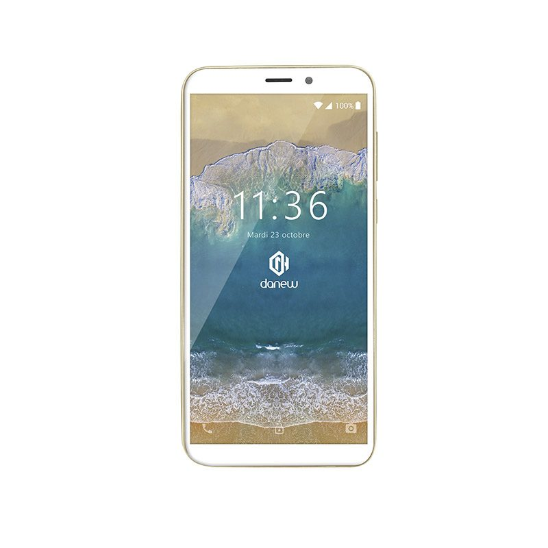 SMARTPHONE DANEW KONNECT 602 6 Blanc/Or (photo)