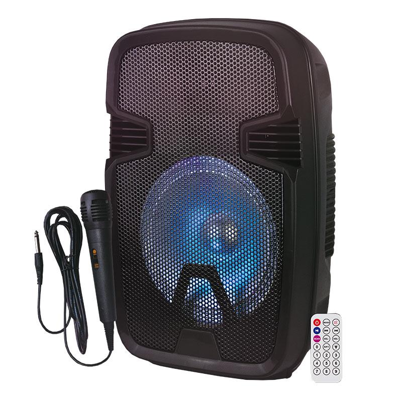 Enceinte Amplifiee ON.EARZ XT PowerBox 200 (photo)
