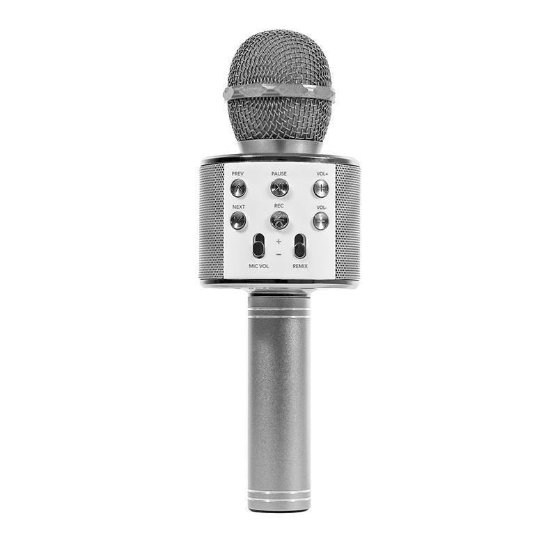 Micro Kool.star Sing Karaoke