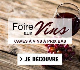 La foire au vin